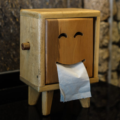 RV toilet paper in a cute toilet paper holder