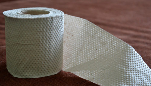 RV toilet paper is awesome but not always necessary.