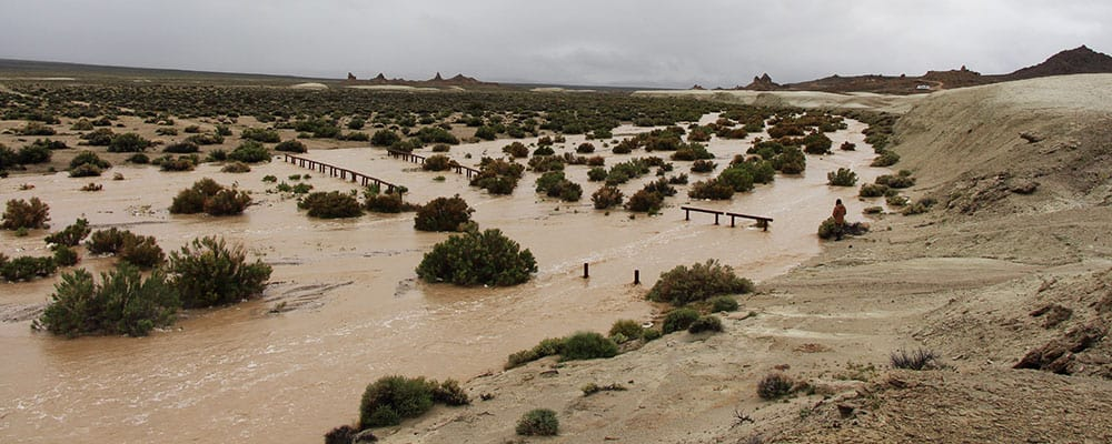 Road crossing the wash at the Trona Pinnacles covered in water.