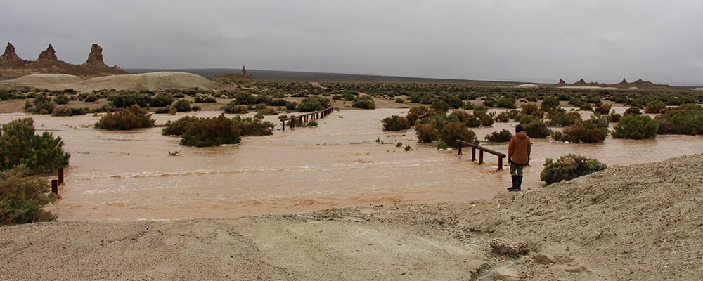 Road connecting the groups of Trona Pinnacles after a night of heavy rain.