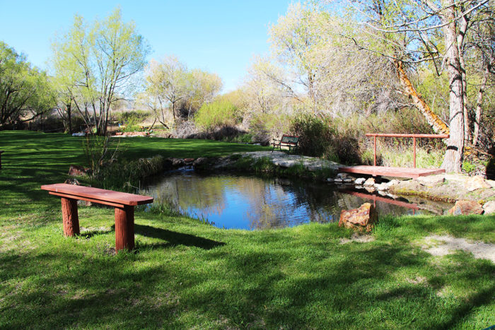 Small pond at Welcome Station RV Park near Wells Nevada.