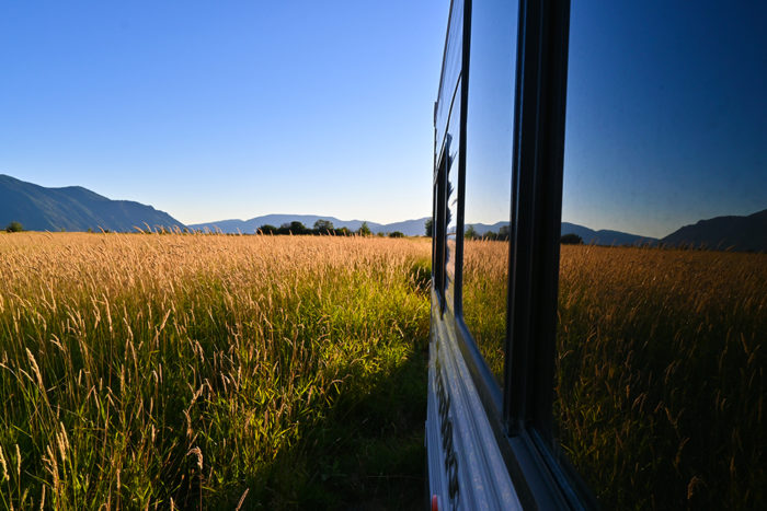 Tall grass outside our trailer at Clark Fork Drift Yard in Idaho.