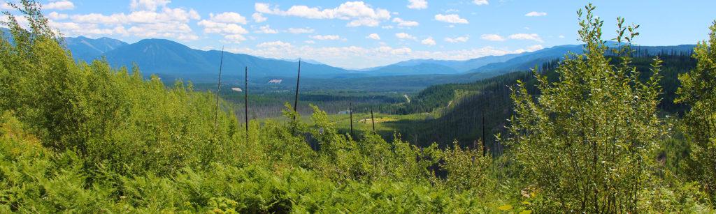 free-camping-near-glacier-national-park-mcginnis-creek-montana