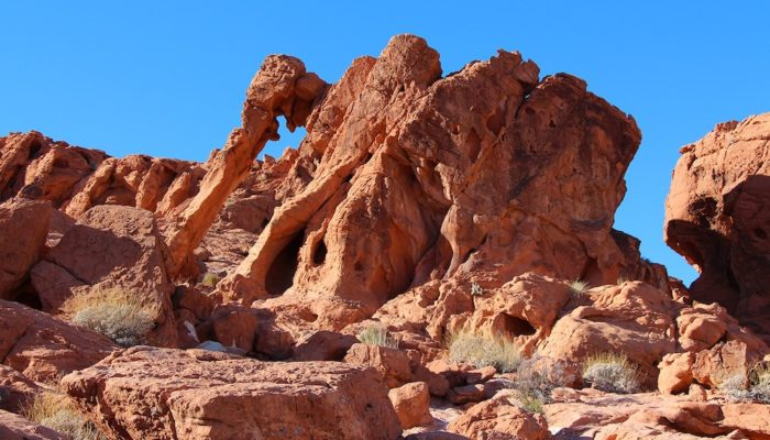 Elephant Rock in Valley of Fire State Park, Nevada.