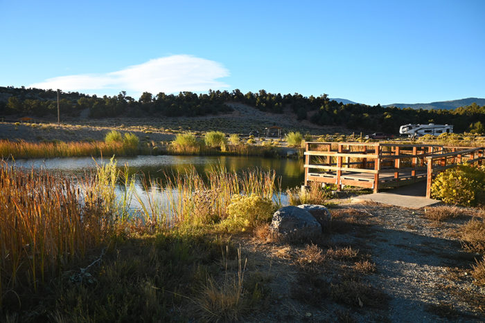 Pond in the center of the Sacramento Pass Recreation Area free campground near Great Basin National Park.